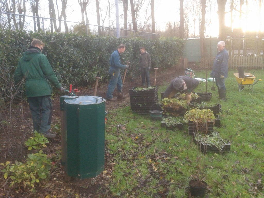 Werkzaamheden beplanting (nov 2015)